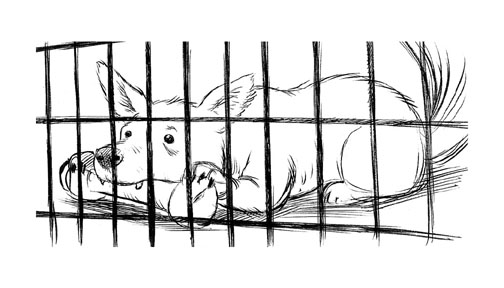 """The Suicidal Dog Illustration - Cage"" is copyright ©2008 by Robert Goodin.  All rights reserved.  Reproduction prohibited."