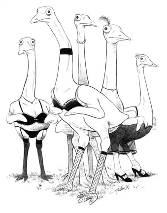 """Subscriptions - Emus in Lingerie"" is copyright ©2008 by Robert Goodin.  All rights reserved.  Reproduction prohibited."